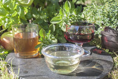 White wine vinegar Royalty Free Stock Photography