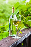 White wine in vineyard Royalty Free Stock Image