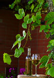 White wine in vineyard Stock Photo