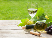 White wine, wine bottle and grape Royalty Free Stock Photography