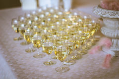 White Wine in Wine Glasses Stock Images