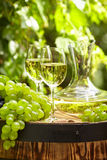 White wine with wineglass and grapes on garden terrace Stock Photos