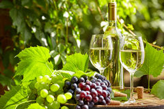 White wine with wineglass and grapes on garden terrace Royalty Free Stock Photos