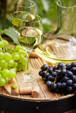 White wine with wineglass and grapes on garden terrace Stock Image