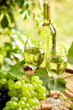 White wine with wineglass and grapes on garden terrace Stock Photo