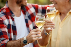 White wine - successfully harvesting grapes Stock Photography