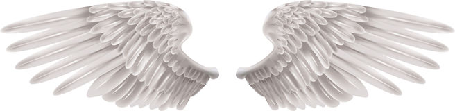 White Wings. Illustration of a pair of outstretched beautiful white wings Stock Photos