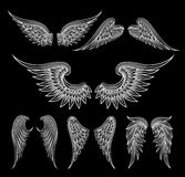White wings on black background. Set of sketch white wings on black background. Vector illustration Stock Image