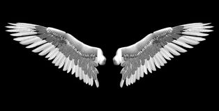 White wings royalty free illustration