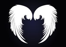 White Wings. Vector illustration on dark background. Black and w Royalty Free Stock Photos