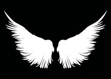 White Wings. Vector illustration on dark background. Black and w Stock Image