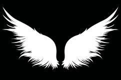 White Wings. Vector illustration on dark background. Black and w Royalty Free Stock Photo