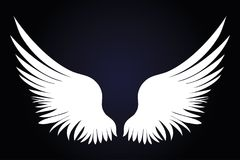 White Wings. Vector illustration on dark background. Black and w Royalty Free Stock Images