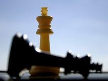 White wins royalty free stock photo