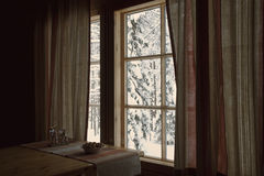 White winter behind a window Stock Photography