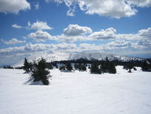 White winter clouds. White winter clouds, 2000 meters above sea level, with a rich in nature Royalty Free Stock Images