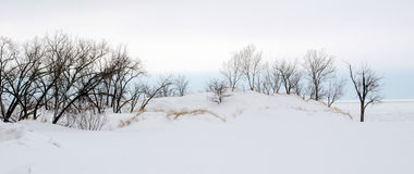 White winter landscape Royalty Free Stock Photo