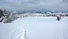 White winter landscape Royalty Free Stock Photos
