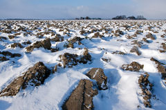 White winter landscape of field with farm Royalty Free Stock Photo