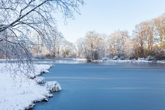 White winter landscape in garden with trees and frozen pond Stock Photography