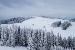 Winter landscape with snow and trees royalty free stock photography