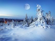 White Winter Landscape, Snow Trees Scene, Background. White winter landscape. Snow Trees and moon scene. Background stock photo