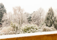 A white winter landscape. View from the balcony  of  a snowy landscape Stock Image