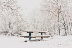 White Winter Picnic Stock Image