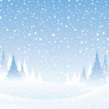 White winter scene. Cold and snowy winter forest landscape Royalty Free Stock Photos