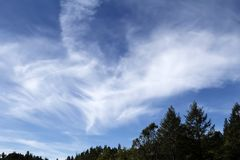 White Wispy Clouds In Blue Sky Above Trees Royalty Free Stock Image