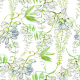 White wisteria flower. Watercolor illustration. Seamless background. Hand drawn watercolor painting sketch. White wisteria flower. Watercolor illustration Stock Photo