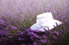 White woman`s hat on violet lavender bushes. Summer landscape near Valensole in Provence, France. Lilac lavender field. Nature background with copy space Royalty Free Stock Images