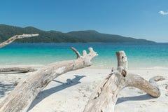 White wood on the beach near tropical sea in Phuket, Thailand Stock Photography