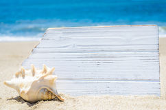 White wood board with seashell on the sandy beach Royalty Free Stock Photo
