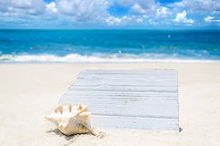 White wood board with seashell on the sandy beach Stock Photography