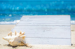 White wood board with seashell on the sandy beach Stock Images