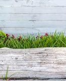 White wood with grass and a trunk stock images
