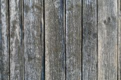 Old gray wooden boards texture stock photo