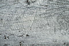 White wood texture Royalty Free Stock Images
