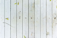 White Wood texture. On the floor Stock Images