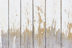 The white wood texture with natural patterns background Stock Image
