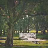 White wooden arched bridge in parkland. Romantic setting of an arched white bridge over lake in Centennial Parkland, Sydney, Australia Stock Images