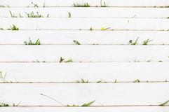 White wooden background with grass, copyspace Stock Images