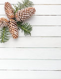 White wooden background with snow covered pinecones Royalty Free Stock Photos