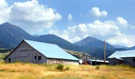 White Wooden Barn Stock Photos