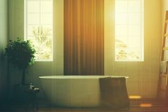 White and wooden bathroom, white tub closeup toned. White and wooden bathroom interior with a wooden floor, a white tub, a tree in a pot, two narrow windows and stock illustration