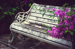 White wooden bench in beautiful thai park. Pattaya, Thailand. Stock Photos