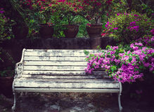 White wooden bench in beautiful thai park. Pattaya, Thailand Stock Image