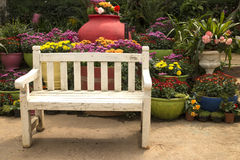 White wooden bench and flower clay pot. White wooden bench in the flower garden Stock Image