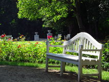 White wooden bench in the garden. One of the many benchs in the city park when people can rest among flowers and trees Stock Photo